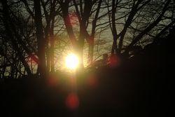 2012-01-01-sinnenn3