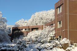 2012-02-01-yukigesyou