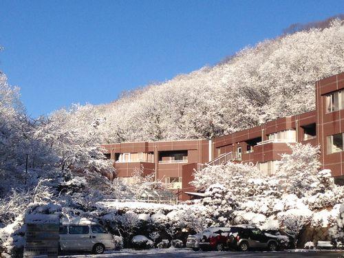 snowmoring